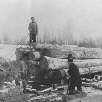 Image of 1089 - Sleigh load of logs