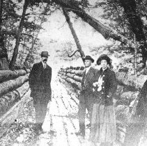 Image of Log chute, location unknown.
