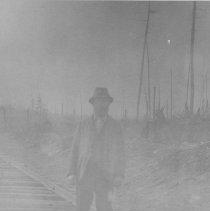"""Image of 1232 - G.E. Fauqier - """"Walking Boss"""""""
