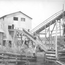 Image of 1271 - Omanique Lumber Company Sawmill, Potter Creek