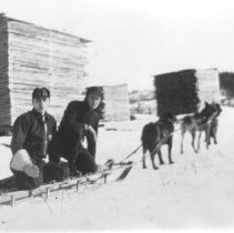 Image of Dog team going for mail