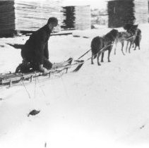 Image of 1286 - Dog sled McRae Lumber Company, Lake of Two Rivers