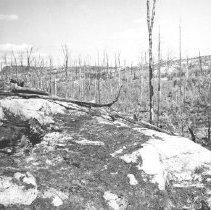 Image of 1357 - After a Fire.