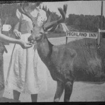 Image of 1949 - Deer being fed by J. Simpson and sister - Cache Lake.