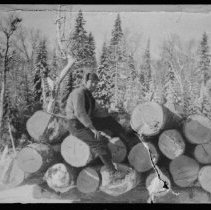 Image of 1901 - Sleigh load of logs, Wright Lake.