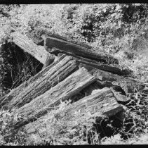 Image of 1921 - Root cellar (?), Basin Depot.