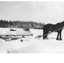 Image of 1976.10.4 - Horse and sleigh.