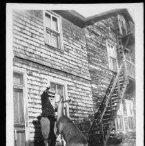 Image of 1953 - Deer at Algonquin Hotel.