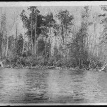 Image of 1972 - Madawaska River near Rock Lake.