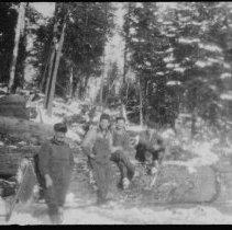 Image of 1935 - White Pine Sawlogs, Booth Lake.