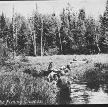 Image of 2254 - On the way to the fishing grounds, Algonquin National Park.