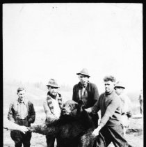 Image of 1937 - Bear killed with polls at McRae's camp, Cache Lake.