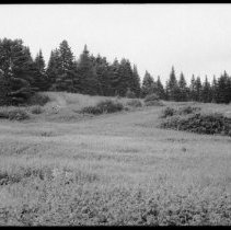 Image of 2565 - McLachlin Depot, White Trout Lake.