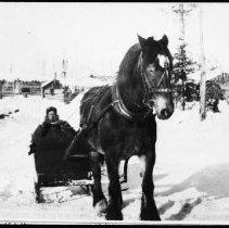 Image of 2750 - Lumber camp.