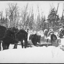 Image of Team of horses and sleigh.