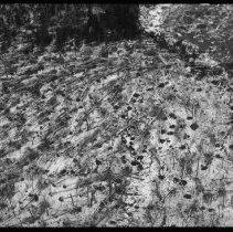 Image of 2929 - Crow Lake blow-down.