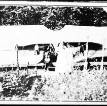 Image of 2977 - Guest tents at Mowat Lodge, Canoe Lake.