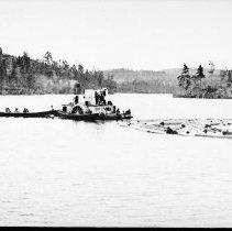 Image of 3005 - Barnet Lumber Co. alligator.