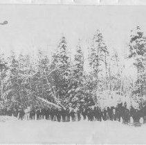Image of 3012 - Huntsville Lumber Co. in Algonquin Park.