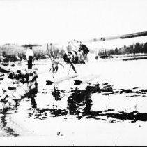 Image of 1977.8.5 - Lands & Forests plane at Kiosk.