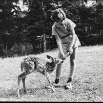 Image of 3144 - Feeding a fawn.