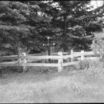 Image of 3203 - River Driver's grave