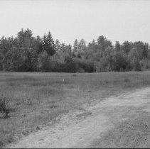 Image of 1976 - Clearing at Basin Depot