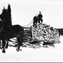 Image of 3331 - Gathering firewood