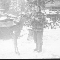 Image of 1956 - Mrs. Ralph Humber Feeding Deer