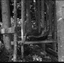 Image of 3703 - Wooden Artifact