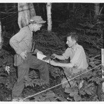 Image of 3924 - Bob Bateman, and Bill Gunn Doing a Vegetation Study on a Bird Plot