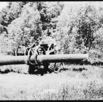 Image of 4088 - 'Carry-Lift' With a White Pine Log