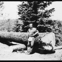 Image of 4094 - Arden Townsend Standing in Front of the White Pine Log