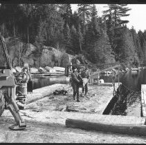Image of 4176 - A Load of Logs From Nominigan Lodge