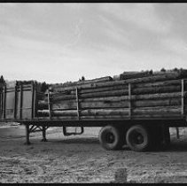 Image of 4183 - A Trailer Loaded with Logs from Nominigan Lodge