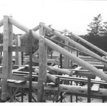"""Image of 4207 - Roof Supports for J.R. Booth's """"Turtle"""" Cabin"""