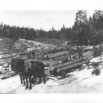 Image of Unloading Logs at the Landing