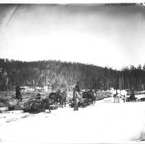 Image of 4274 - Hauling Logs and Piling Them on the Ice