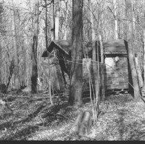 Image of November 7, 1978 - Shed along Minnesing road, near Canisbay Lake