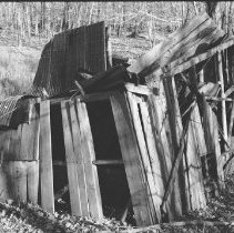Image of 4492 - Remains of sugar maple shanty along Minnesing Road