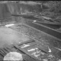 Image of 4626 - Logs from Bridgedam