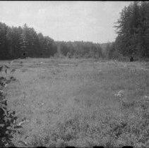 Image of 4704 - Bonnechere River