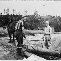 Image of 5088 - Barney the horse at Rock Lake