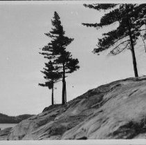 Image of 5175 - The point on Grand Lake where Tom Thomson's West Wind was probably painted.