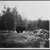 Image of 5197 - Bear in the dump at Killarney Lodge, Lake of Two Rivers