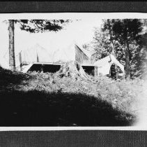 Image of 1950 - The tents which were used to house the naturalist staff, Found Lake , 1950.