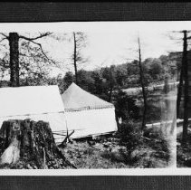 Image of 1950 - The tents which were used to house the naturalist staff, Found Lake, 1950.