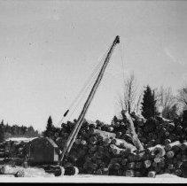 Image of 5216 - Hardwood logs