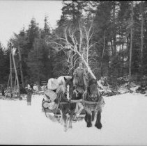 Image of 5243 - Sleighload of logs