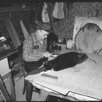 Image of 5572 - Mr. Clarence Bouges skinning a beaver, Dwight, c. 1979.
